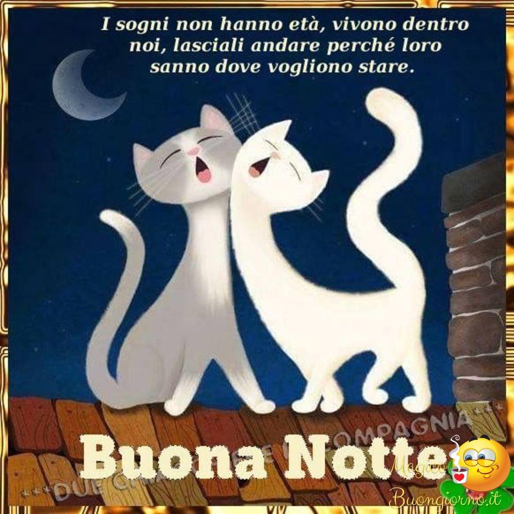 Belle-Immagini-Buonanotte-da-Scaricare-perFacebook-e-Whatsapp-47