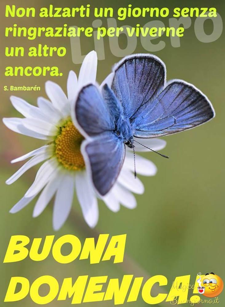 Buona-Domenica-004