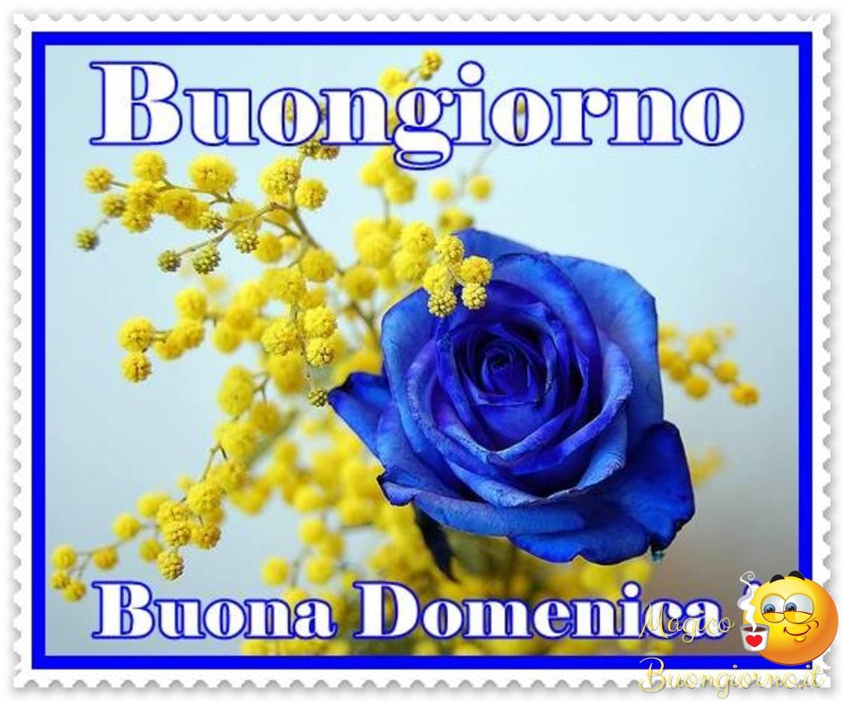 Buona-Domenica-006