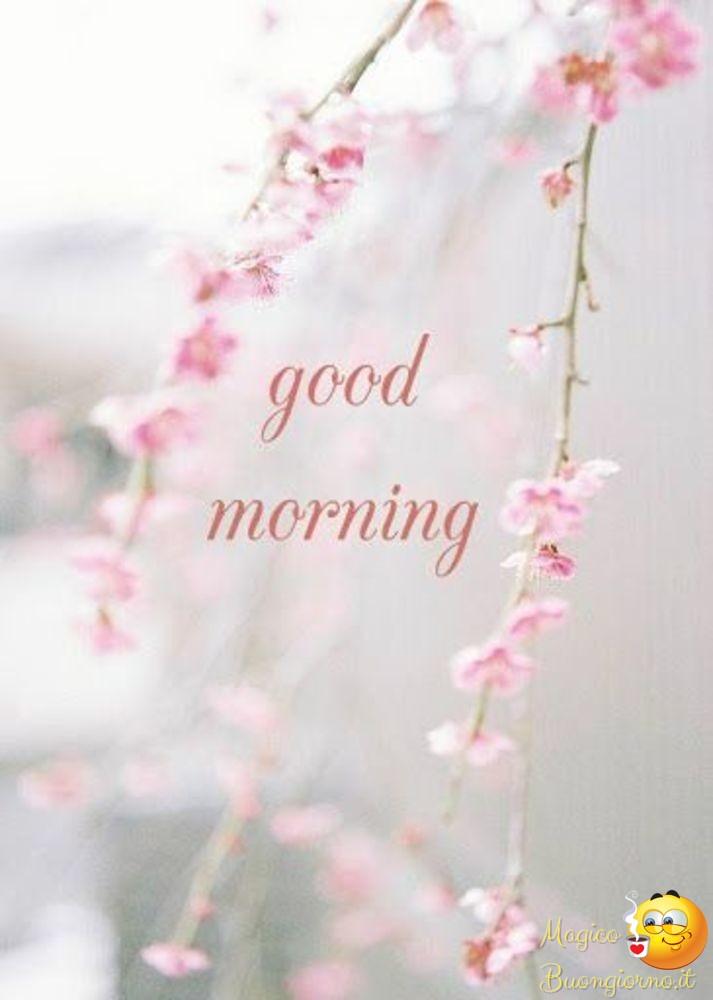 Buongiorno-Top-Immagini-863