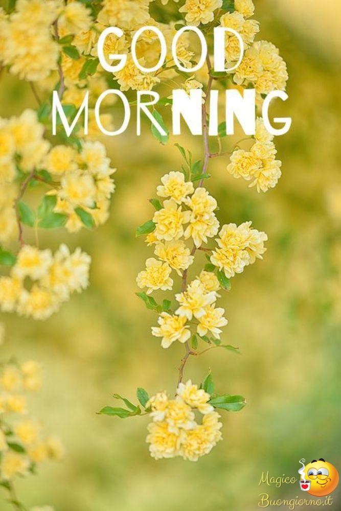 Buongiorno-Top-Immagini-876